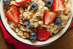 Healthy Homemade Oatmeal with Berries Royalty Free Stock Photography