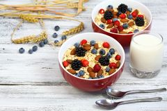 Healthy homemade oatmeal  breakfast Royalty Free Stock Photos