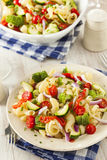 Healthy Homemade Pasta Salad Stock Images
