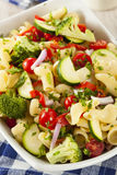 Healthy Homemade Pasta Salad Royalty Free Stock Photos