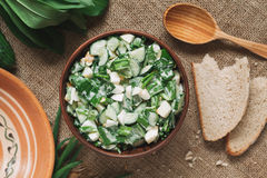 Healthy homemade salad for lunch with ramson Royalty Free Stock Image