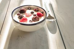 Healthy homemade yoghurt with fresh blueberries, raspberries a. Nd blackberries with early summer morning light, shallow depth of field royalty free stock photos