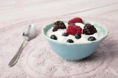 Healthy homemade  yogurt bowl with fresh blueberries, raspberrie. S and blackberries Royalty Free Stock Photos