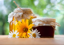 Healthy honey Stock Photography