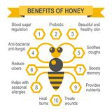 Healthy honey infographic placard. Royalty Free Stock Photos