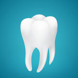 Healthy human tooth on blue Stock Image