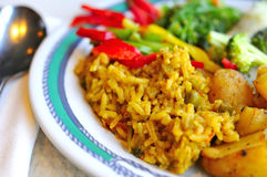 Healthy Indian vegetarian set meal. Prepared with various Oriental and Asian spices and seasonings Stock Photography