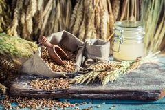 Healthy ingredients for rolls and bread with several grains Stock Photos