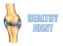 HEALTHY JOINT Stock Image