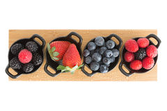 Healthy juicy autumn or fall berries Stock Images