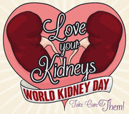 Healthy Kidneys and Greeting Message of Love and Renal Care, Vector Illustration Royalty Free Stock Photo