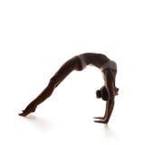 Healthy latino woman doing yoga Royalty Free Stock Image