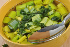 Healthy leek soup with parsley Stock Photography