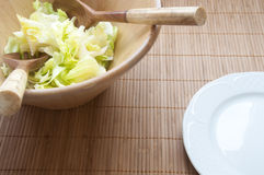 Healthy lettuce salad Stock Photography