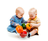 Healthy life. Two baby boys leading healthy life Stock Images