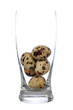 Healthy life. Quail eggs in isolated glass on white background Stock Images