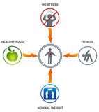 Healthy lifestyle. Healthy food, fitness, normal weight and no stress leads to healthy heart and life Stock Image