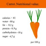 Healthy Lifestyle. Carrot. Nutritional value Health Vector illustration Royalty Free Stock Photo