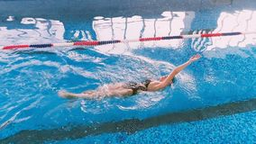 Healthy lifestyle concept. Swimmer in a swimming pool. Aerial shot. 4K stock footage