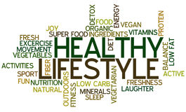 Healthy Lifestyle Concept Word Cloud. A Wordcloud showing many Tags of a Topic Royalty Free Stock Image