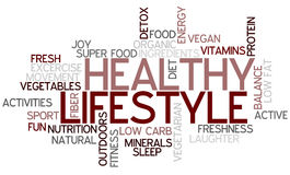 Healthy Lifestyle Concept Word Cloud. A Wordcloud showing many Tags of a Topic Royalty Free Stock Photography