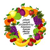 Healthy lifestyle-fruit circle. Wreath from fruit for a healthy lifestyle Stock Photography