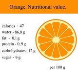 Healthy Lifestyle. Orange. Nutritional value Health Vector illustration Stock Image