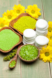 Healthy lifestyle - Spa minerals Stock Photography