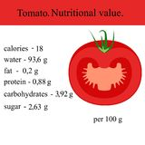 Healthy Lifestyle. Tomato. Nutritional value Health Vector illustration Royalty Free Stock Image