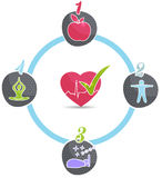 Healthy lifestyle wheel. Good sleep, fitness, healthy food, stress management leads to healthy heart and healthy life Royalty Free Stock Photos