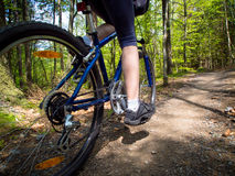 Healthy lifestyle - woman cycling Royalty Free Stock Photos