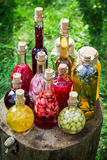 Healthy liqueur with alcohol and fruits in garden Stock Images