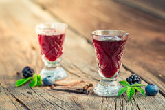 Healthy liquor with alcohol and berry fruits Royalty Free Stock Images