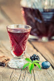 Healthy liquor with berry fruits and alcohol Stock Photography