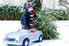 Healthy little smiling kid boy driving toy car with Christmas tree. Happy child in winter fashion clothes bringing hewed royalty free stock photo