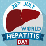 Healthy Liver for Hepatitis Day with Long Shadow Design, Vector Illustration Stock Photos