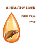 HEALTHY LIVER, SYRUP Stock Image