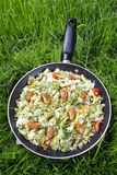 Healthy living - fried cabbage in frying pan on green grass Stock Photos