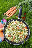 Healthy living - fried cabbage in frying pan on green grass Royalty Free Stock Image
