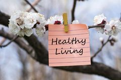 Healthy living in memo. Pined on tree with blooms Royalty Free Stock Photo