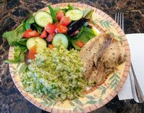 Tilapia, Cauliflower Rice and Side Salad - Low Carb Dinner. A healthy low carb dinner of broiled tilapia fish, riced cauliflower and broccoli and a side salad royalty free stock image
