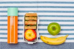 Healthy lunch box with sandwich and fresh vegetables, bottle of Royalty Free Stock Image