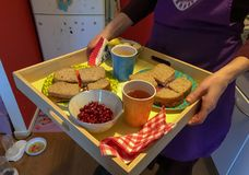 Healthy lunch for kids on a plate. In amsterdam, the netherlands Royalty Free Stock Photography