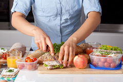 Healthy lunch preparing Stock Image