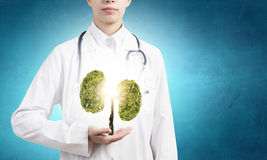 Healthy lungs Stock Photo