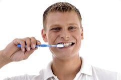 Healthy male brushing his teeth Royalty Free Stock Photos