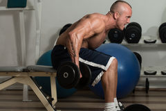Healthy Man Doing Back Exercises With Dumbbell Stock Photos