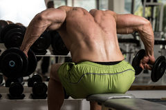 Healthy Man Doing Heavy Weight Exercise For Back Royalty Free Stock Images