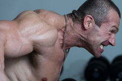 Healthy Man Doing Heavy Weight Exercise For Back Royalty Free Stock Image