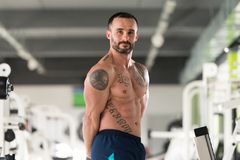 Healthy Man Showing Abdominal Muscle. Portrait Of A Young Physically Fit Tattoo Man Showing His Well Trained Body - Muscular Athletic Bodybuilder Fitness Model royalty free stock image